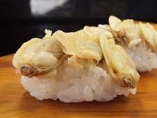 御簾蛤/ミスハマグリ