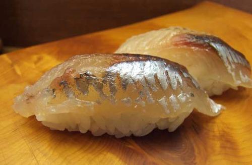 筑紫飛魚/ツクシトビウオ