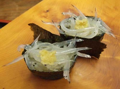 白魚/シラウオ