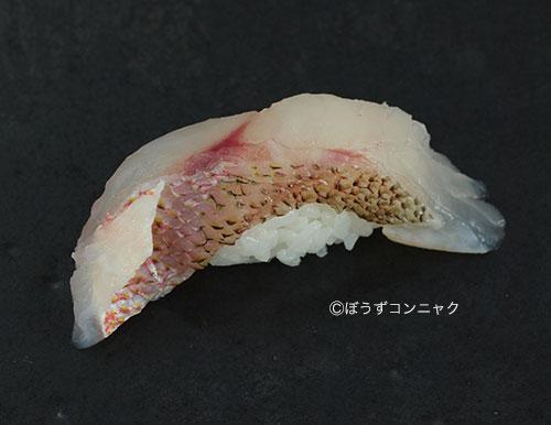 ヨコスジフエダイの焼霜造り