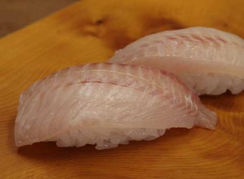 駕籠かき鯛/カゴカキダイ
