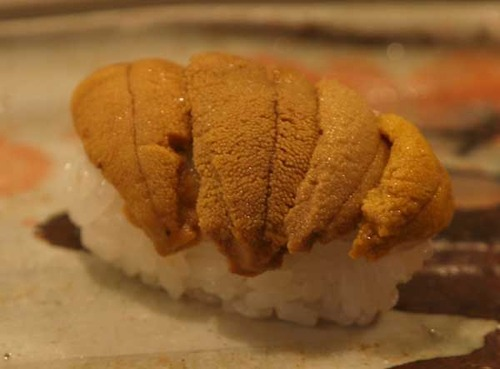 松江市内『大鯛寿司』の十二かん、その十一赤海胆/アカウニ