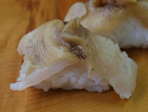 赤貝(あかばい)/エゾボラモドキ