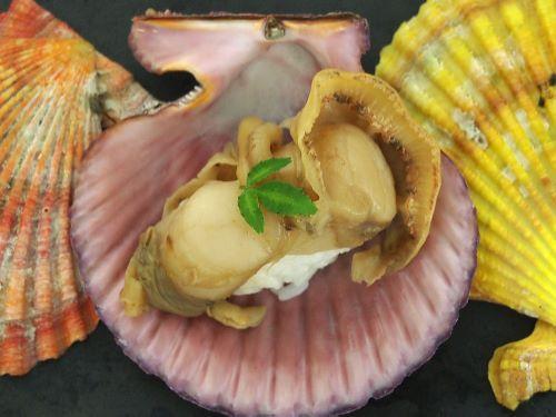 ヒオウギの煮貝